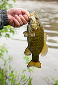 Fishing For Smallmouth Bass