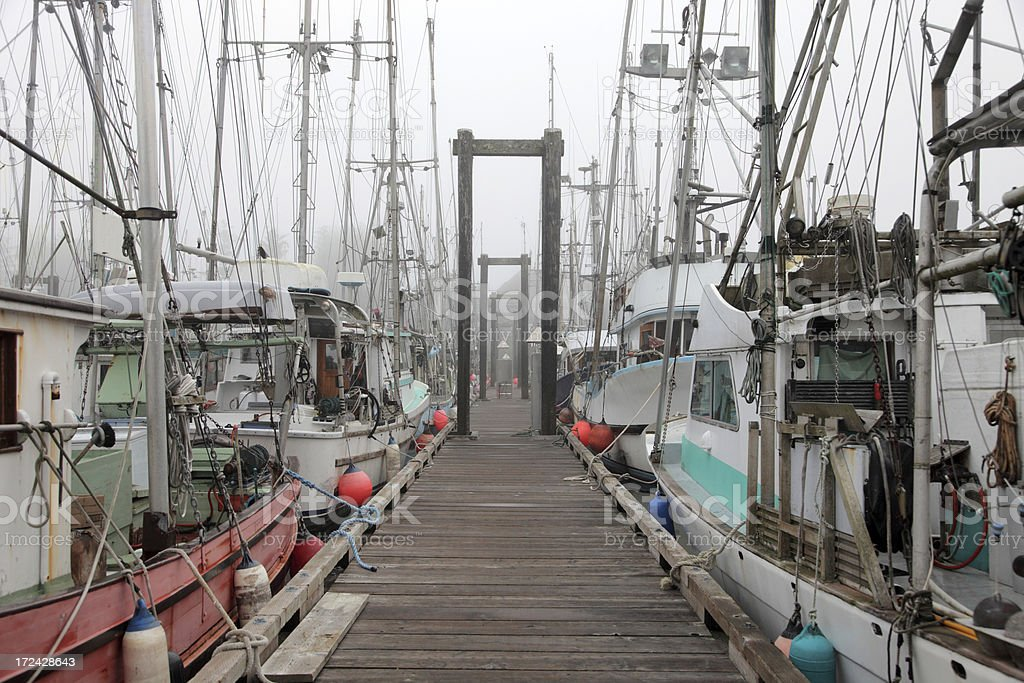 Fishing Harbor in foggy morning royalty-free stock photo