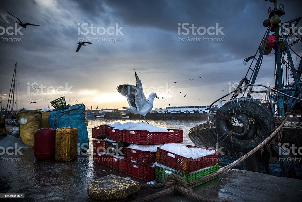 Fishing Industry: Bringing in the catch stock photo