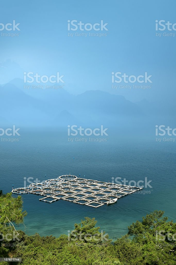 fishing industry royalty-free stock photo