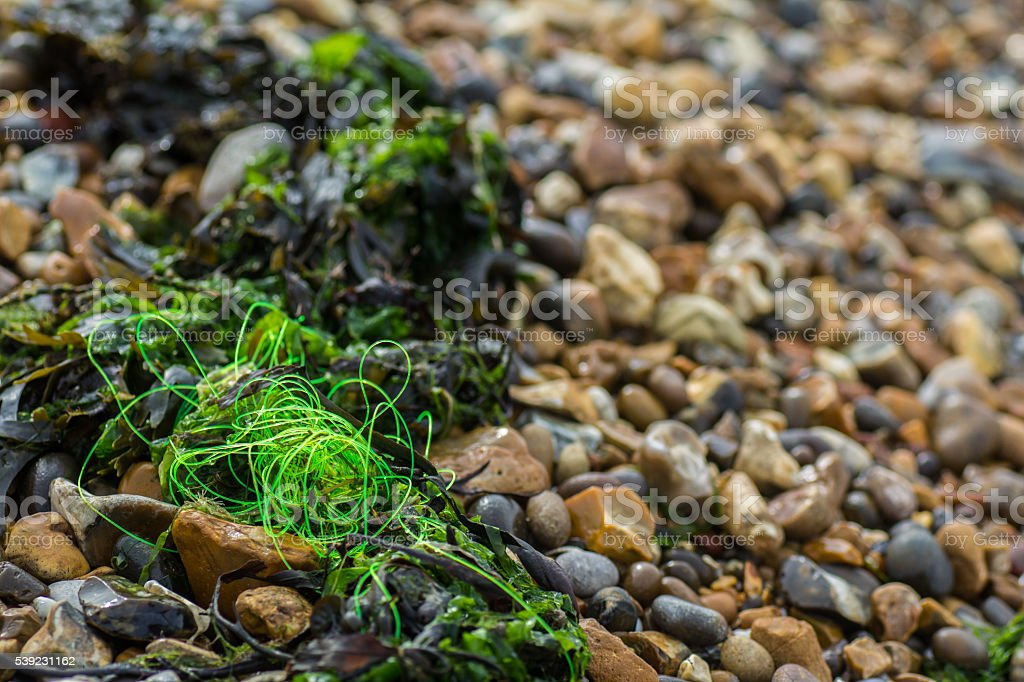 Fishing Line Left by Tide stock photo