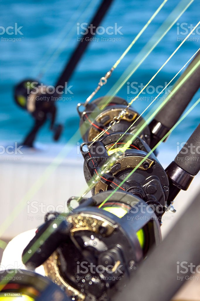 Fishing Lines royalty-free stock photo