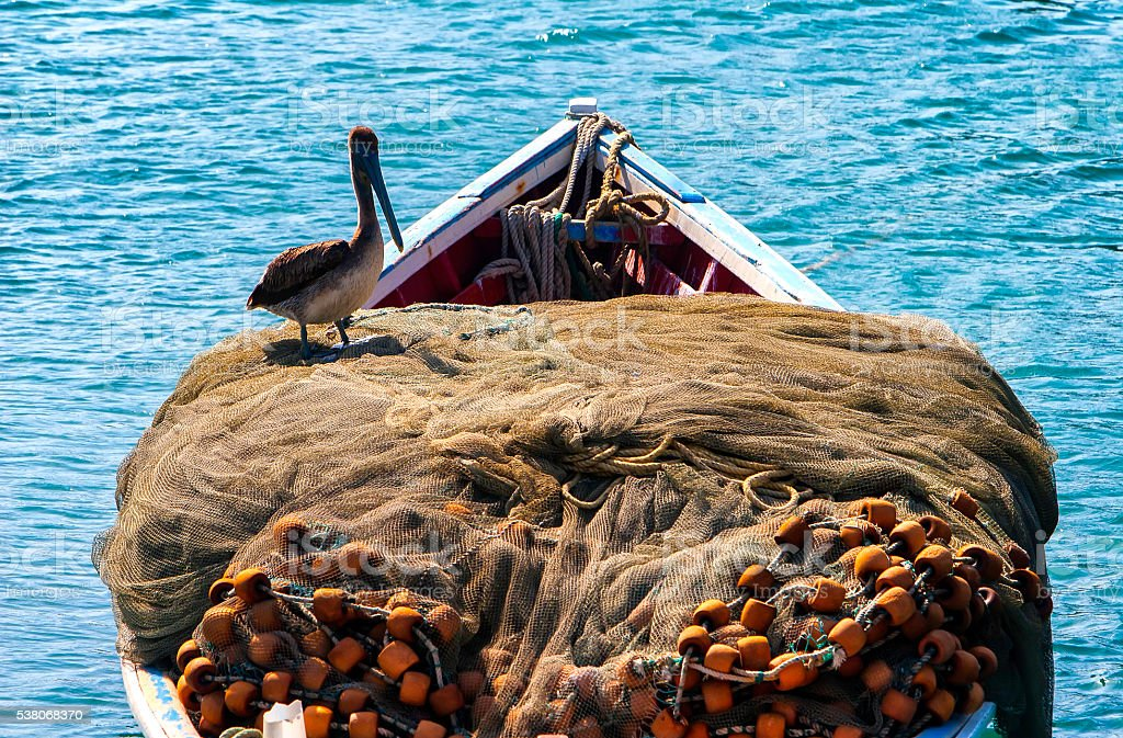 Fishing net, boat and pelican stock photo