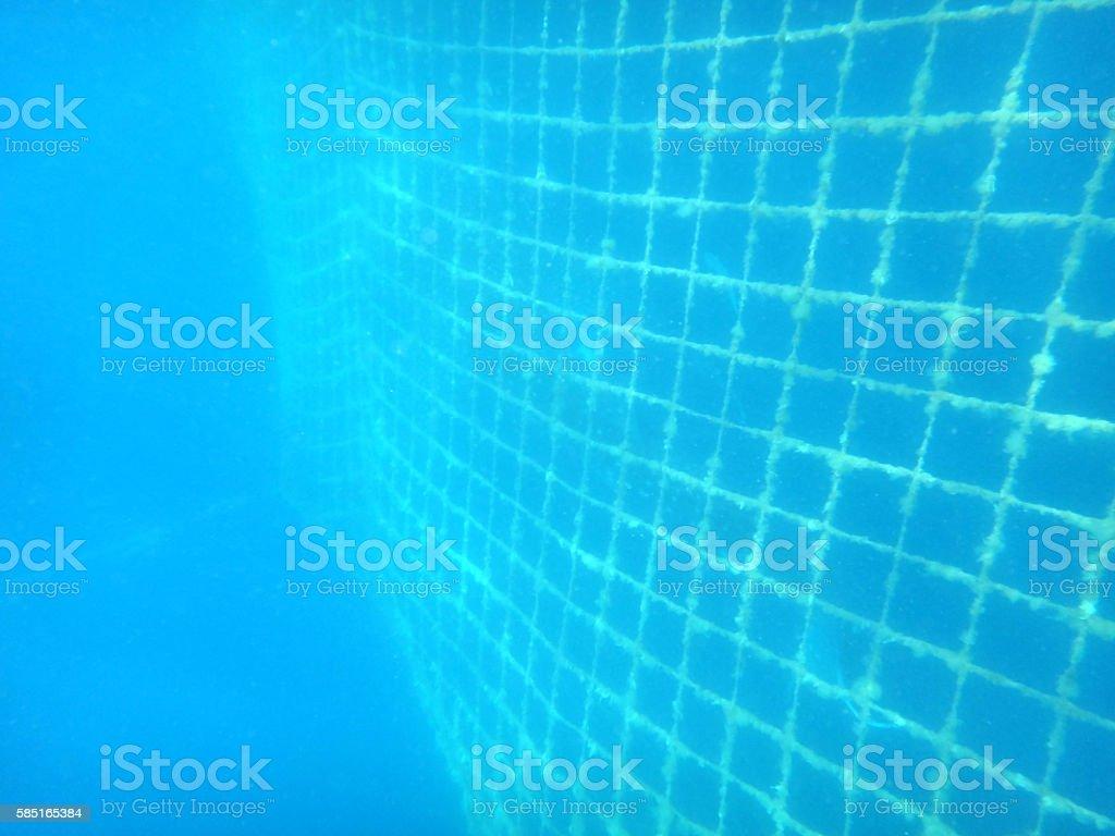 Fishing net underwater stock photo