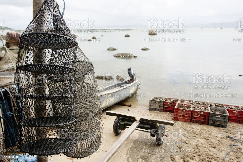 Fishing nets hanging in oyster farm on the ocean coast stock photo