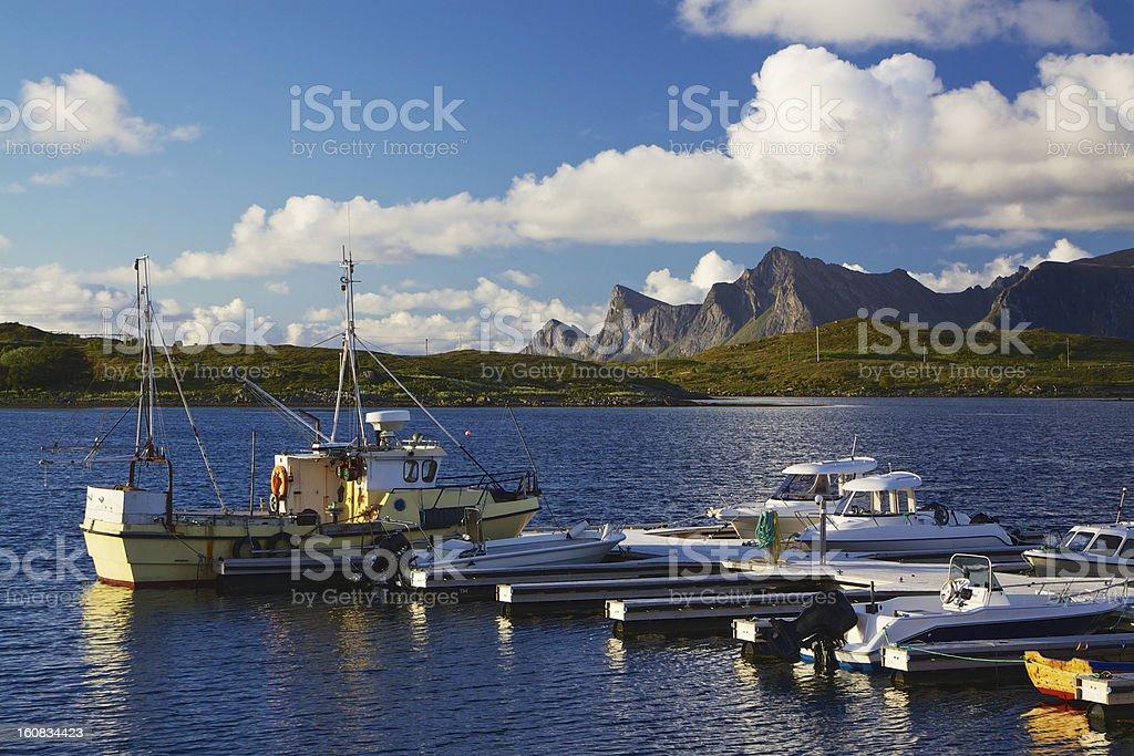 Fishing on Lofoten royalty-free stock photo