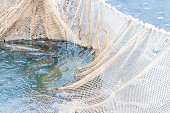 Fishing on the lake, the fish in the net