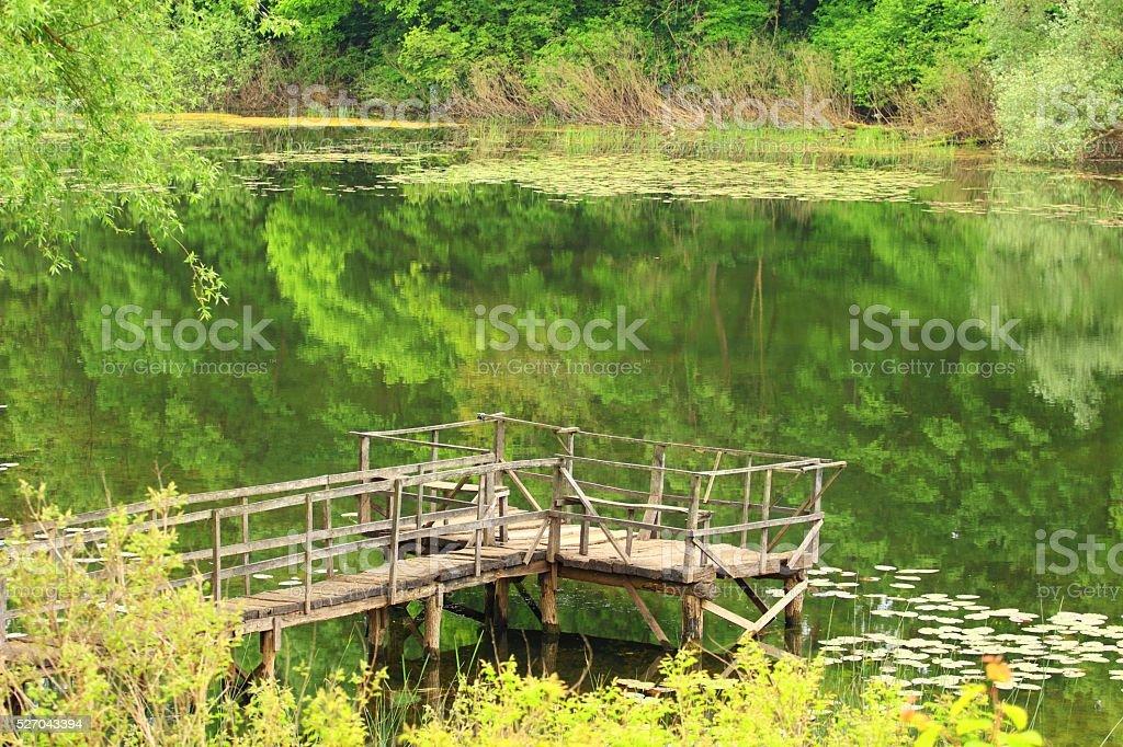 Fishing place on the lake stock photo