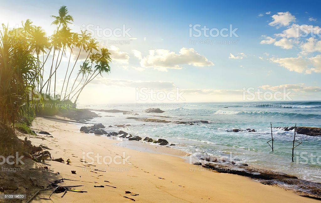 Fishing poles in ocean stock photo