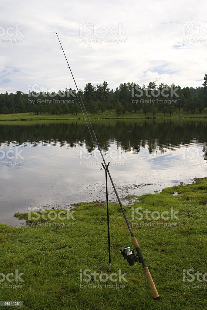 Fishing Pole-Wishful Thinking royalty-free stock photo