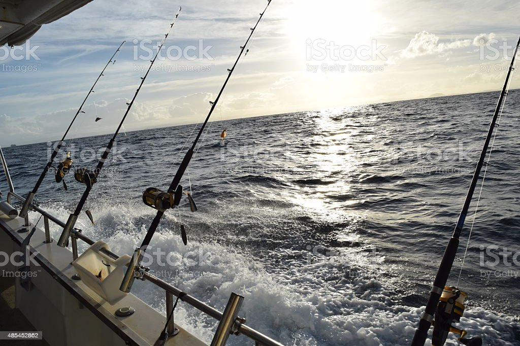 Fishing rods in a row. stock photo