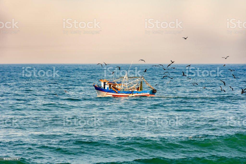 Fishing trawler with seagulls stock photo