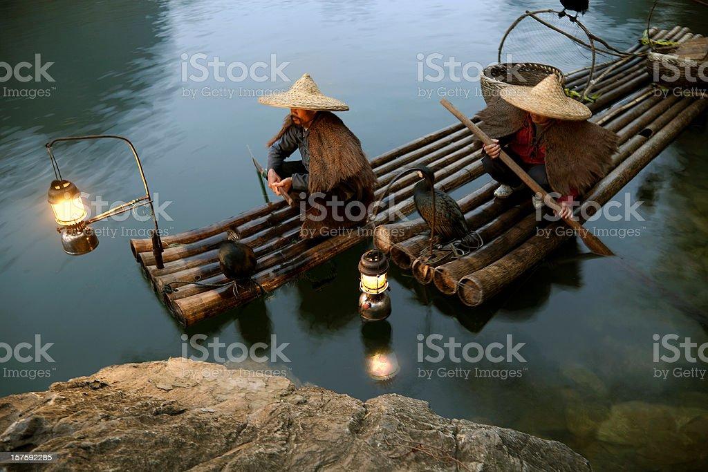 Fishing with Cormorants stock photo