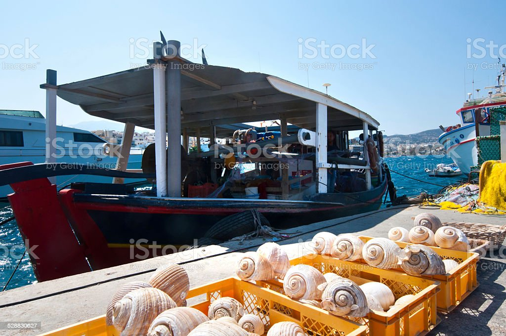 Fishing yacht at the port of Creta, seashells stock photo