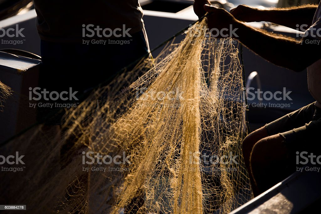 Fishing-net and human hands. stock photo