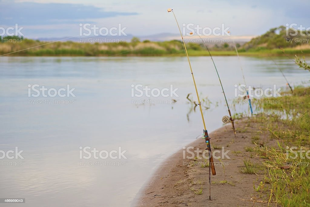 Fishing-rods on the banks of river royalty-free stock photo