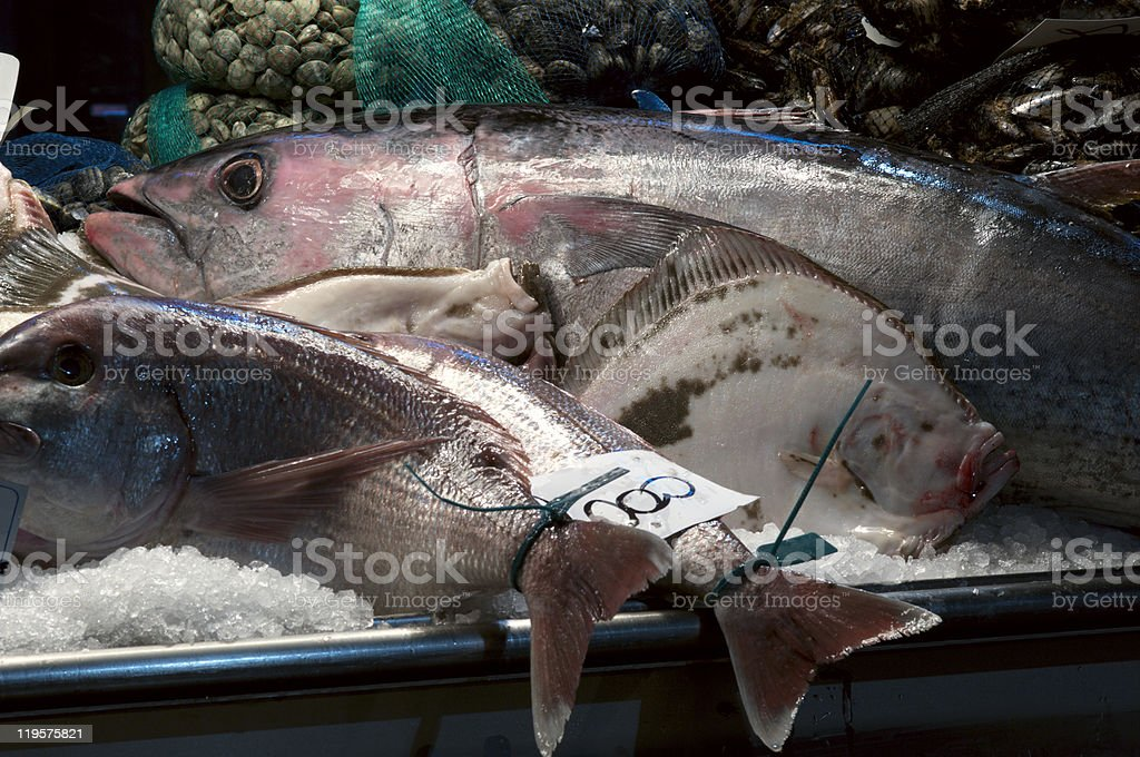 Fishmarket composition royalty-free stock photo