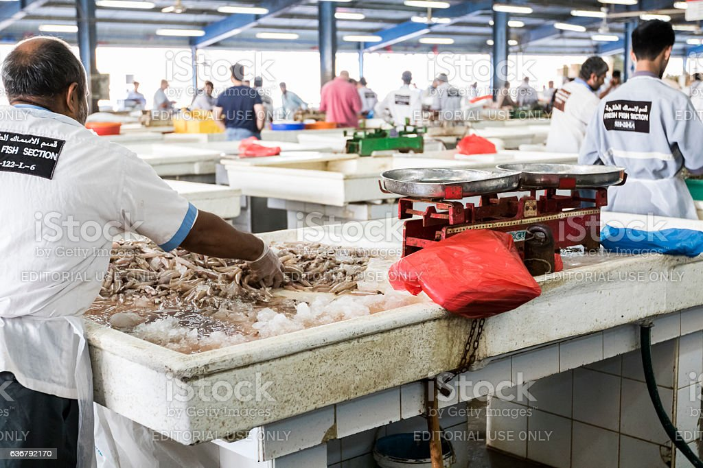 Fishmonger working at Dubai Fish Market. stock photo