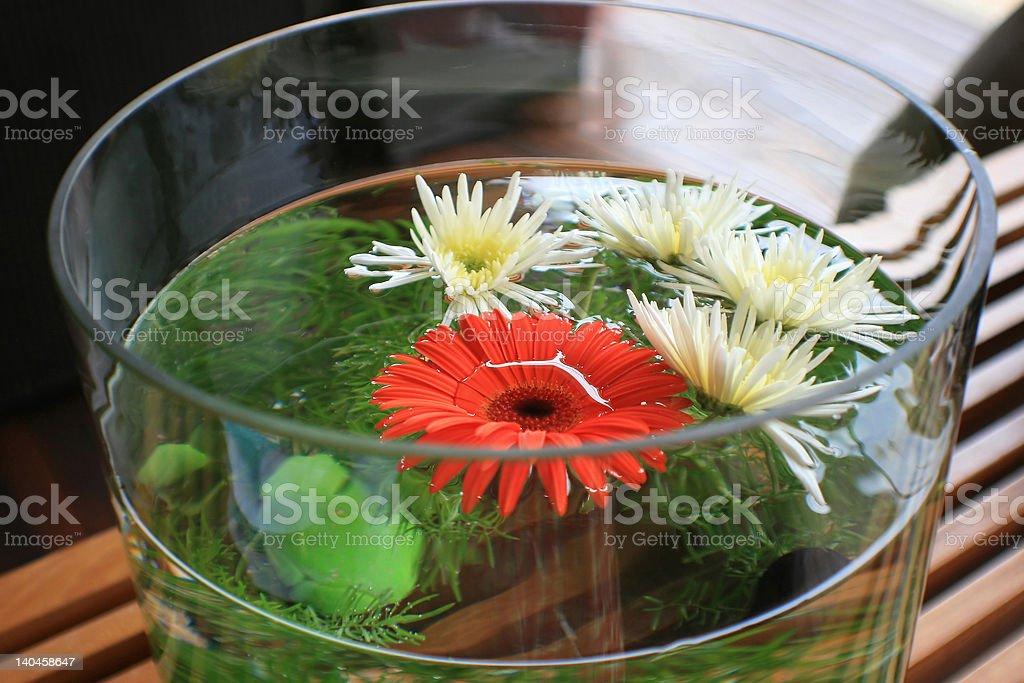 Fishy flowers stock photo