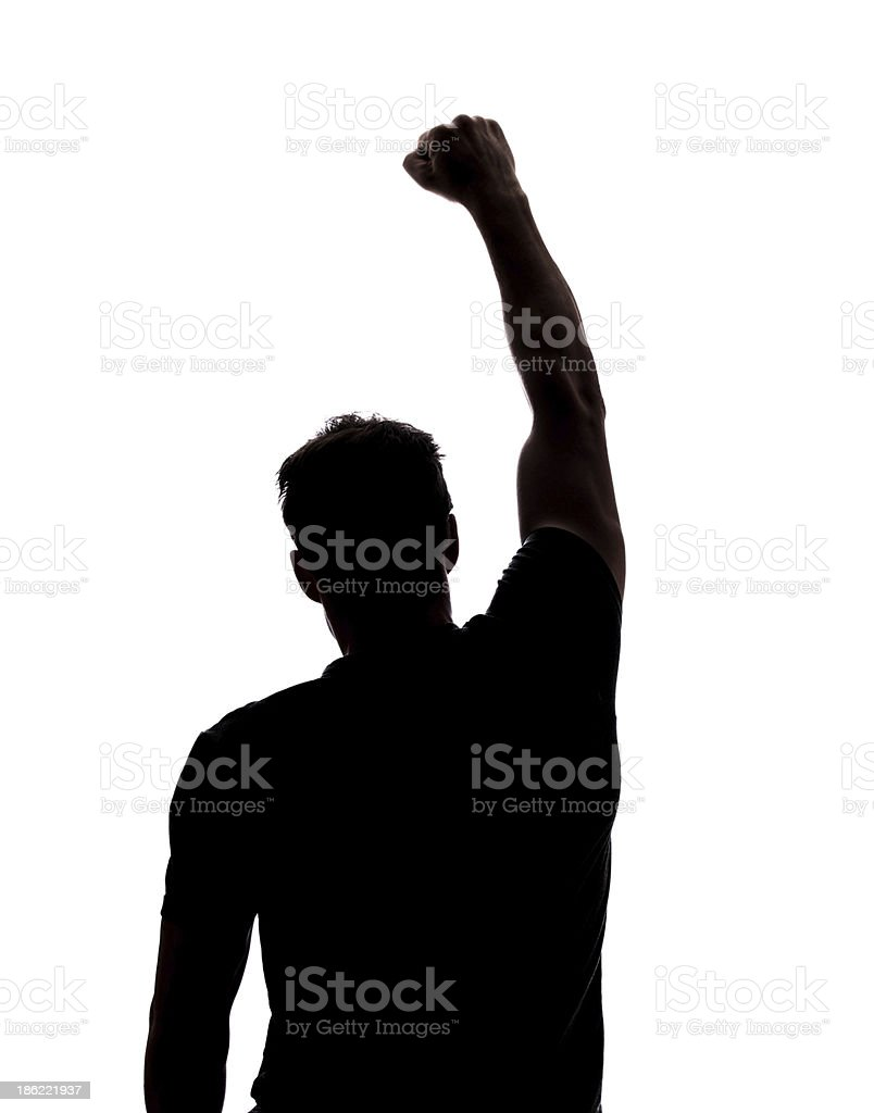 Fist in the air royalty-free stock photo