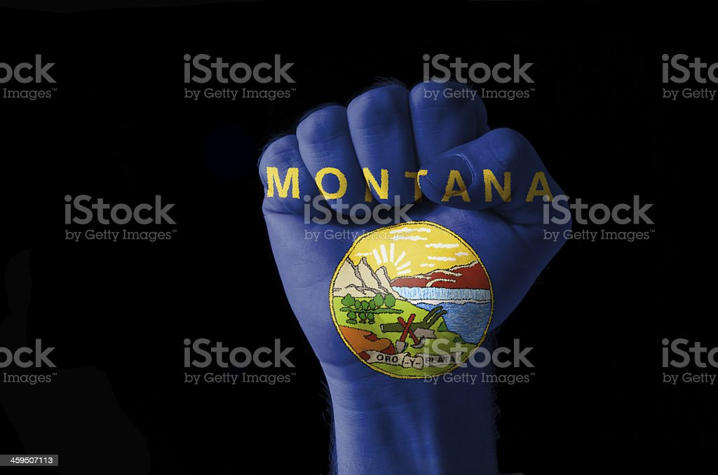 Fist painted in colors of us state montana flag stock photo