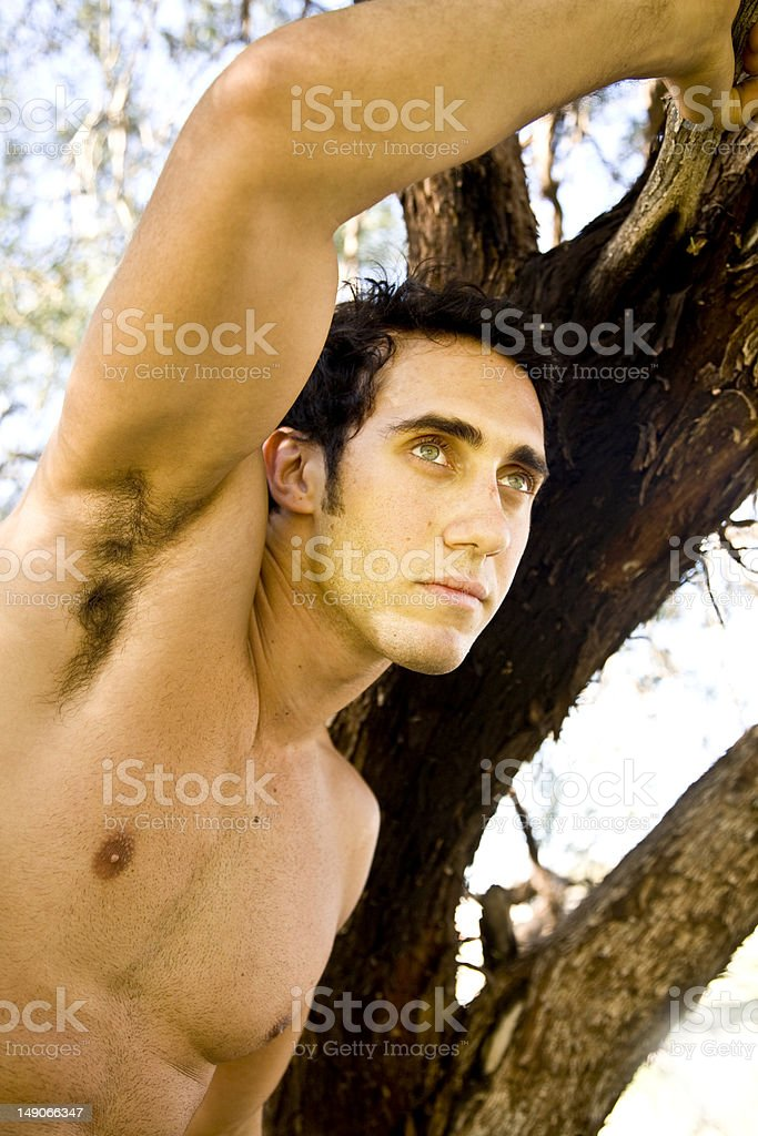 Fit male model climbs tree stock photo