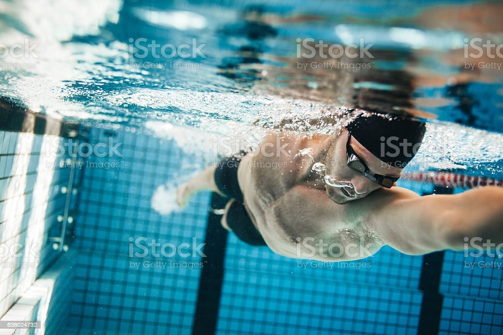 Fit swimmer training in the swimming pool stock photo