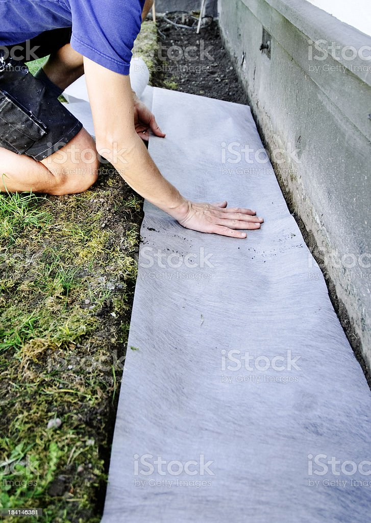 Fitting a Weed Suppresant Membrane. royalty-free stock photo
