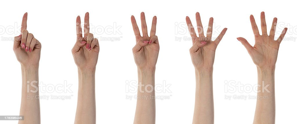 Five counting female hands isolated on white stock photo