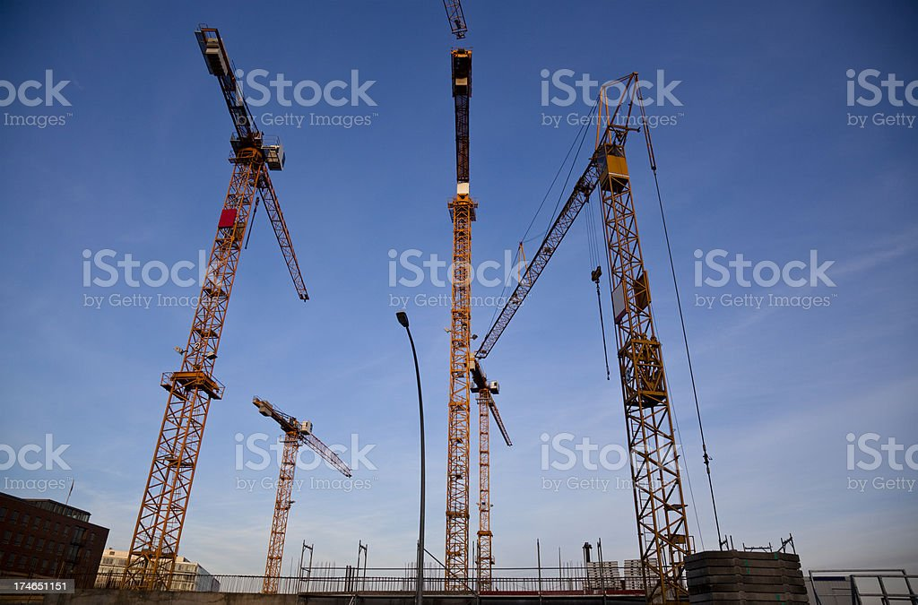 five cranes at sunset royalty-free stock photo