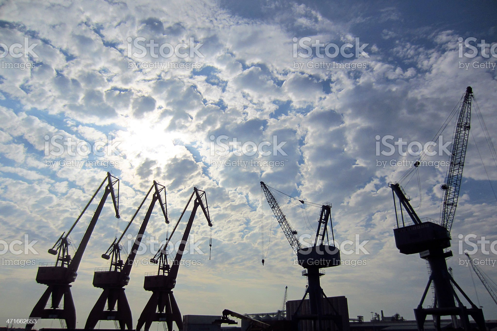 Five cranes royalty-free stock photo
