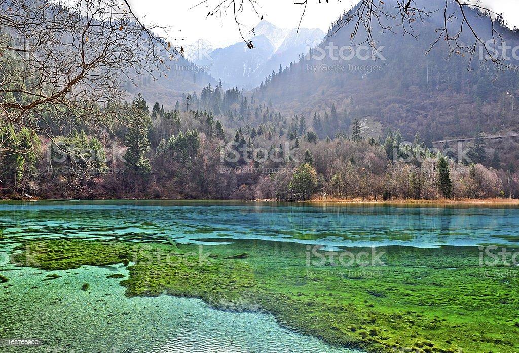 five flower lake, jiuzhaigou, sichuan, china stock photo