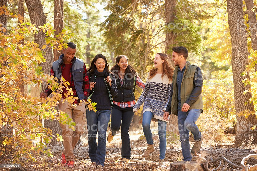 Five friends enjoying a hike in a forest, California, USA stock photo