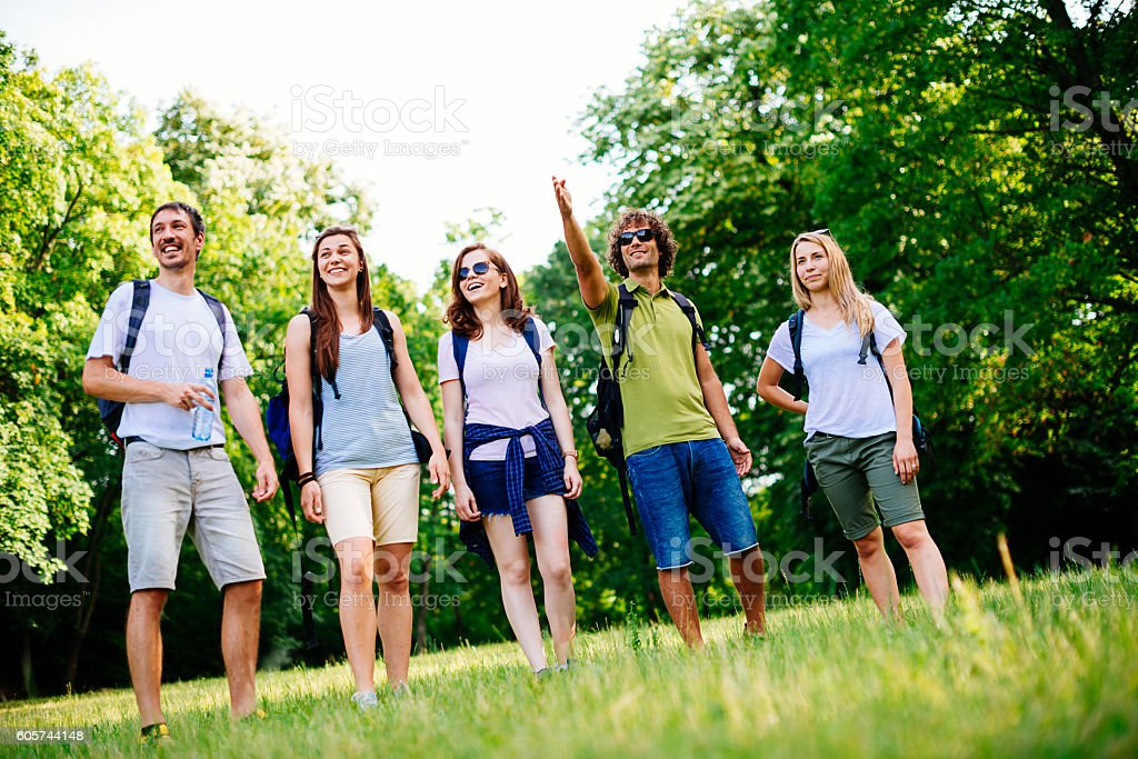 Five friends going to the woods stock photo