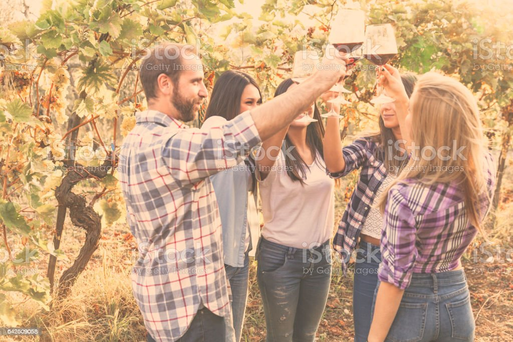 Five friends toasting together in the country stock photo
