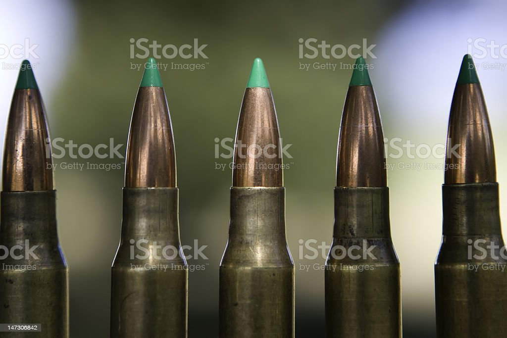 Five hollow tip 308 bullets royalty-free stock photo