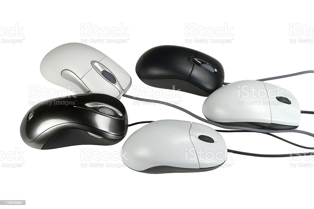 five mouses stock photo