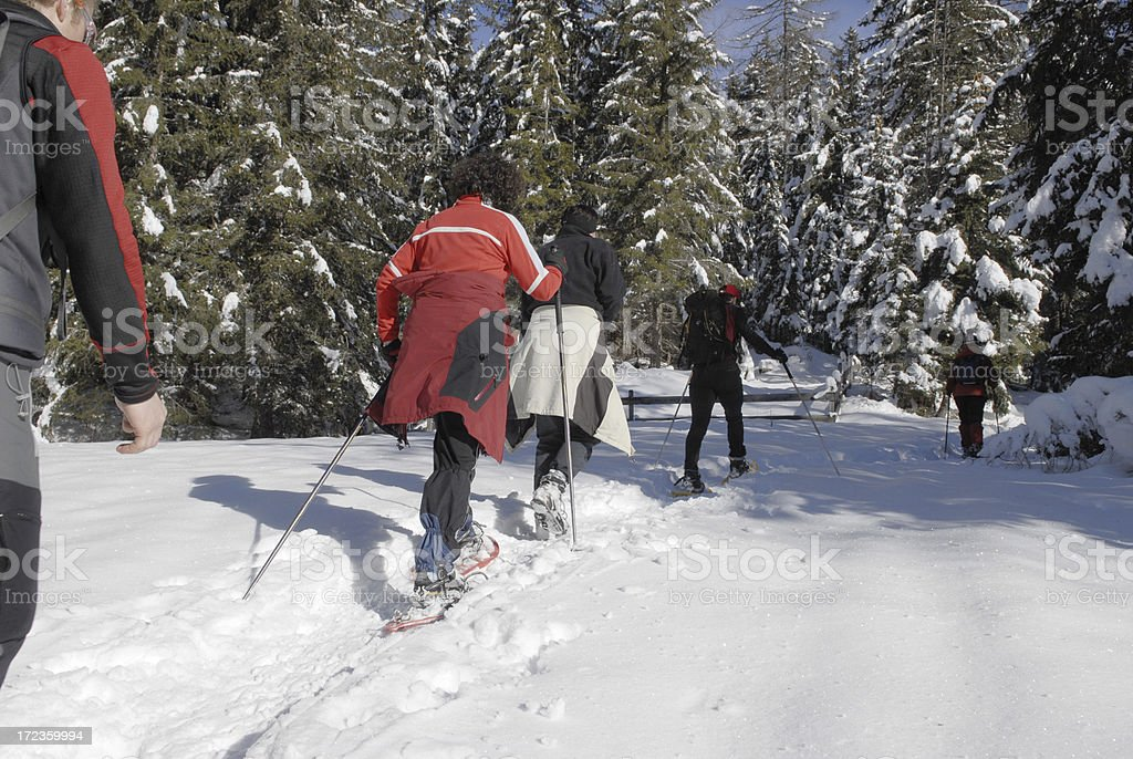 Five people Snowshoeing royalty-free stock photo