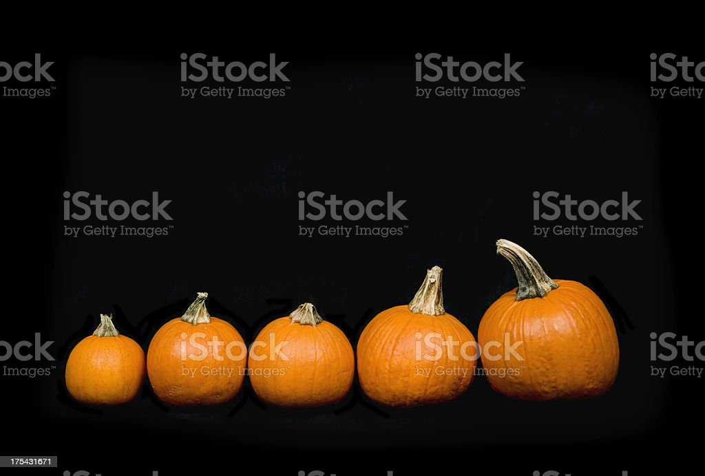 five pumpkins stock photo