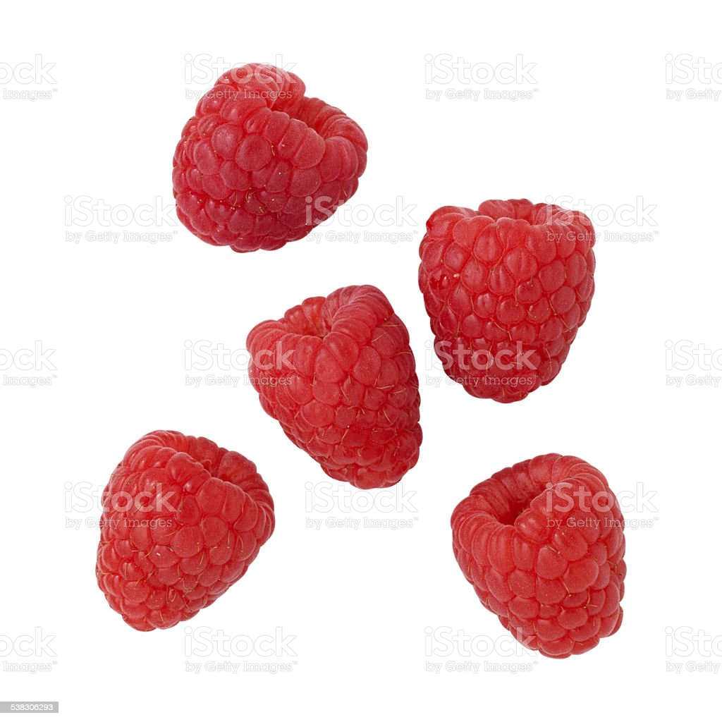 Five raspberries on a white background. stock photo
