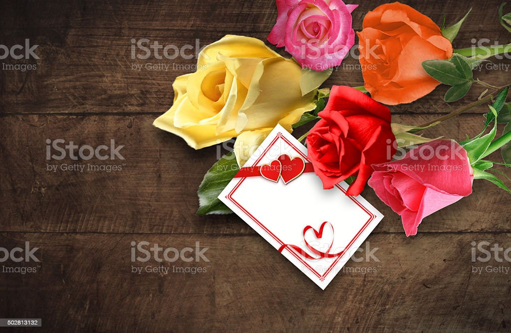 Five roses stock photo