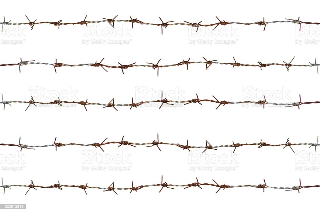 five rows of rusty barbed wire fence,isolate on white stock photo