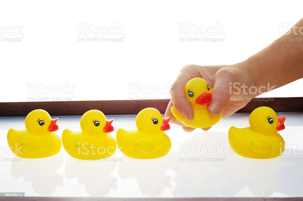 Five rubber duckies with the fourth one getting picked up royalty-free stock photo