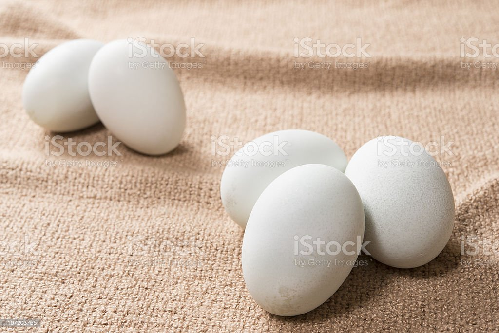 Five salted eggs royalty-free stock photo