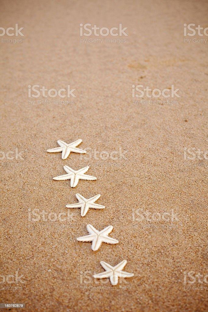Five Star Fish Rating Symbol Starfish Sand Vertical stock photo