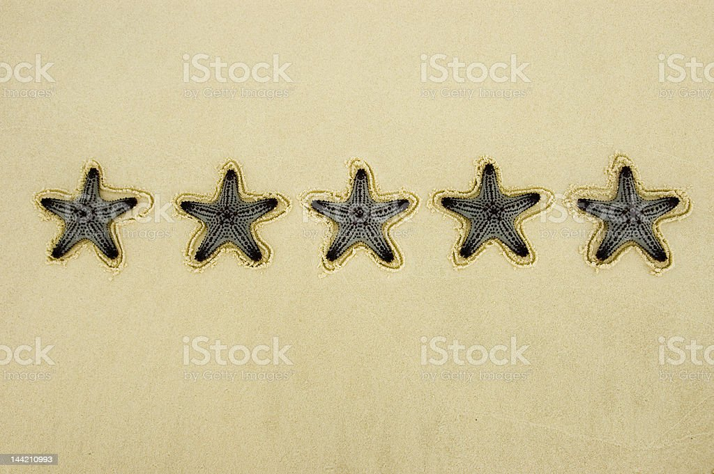 Five Star Rating royalty-free stock photo