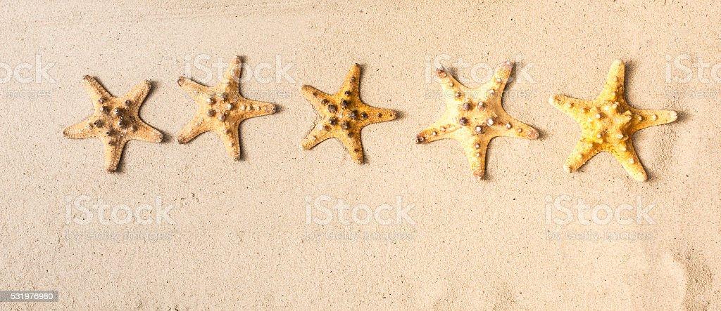 Five stars in starfish stock photo