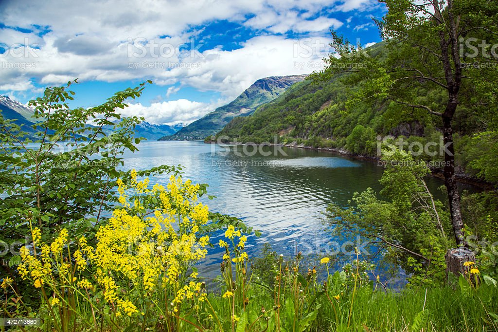 Fjord Landscape. Norway. stock photo