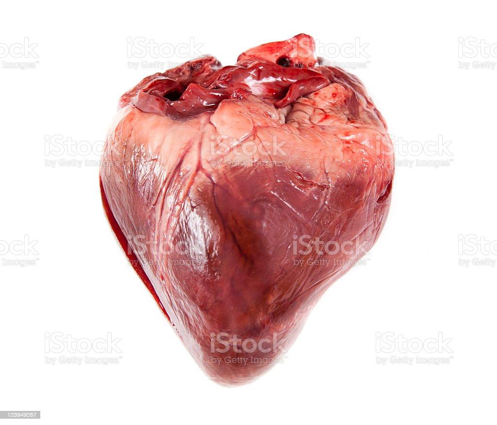Flabby Heart stock photo