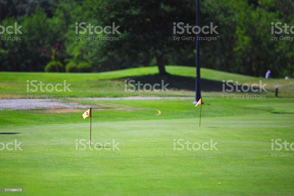 Flag and the golf field royalty-free stock photo